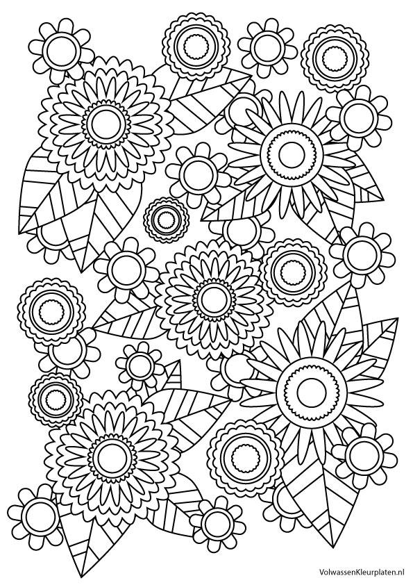 Kleurplaten Bloemen En Hartjes.Volwassen Kleurplaat Bloem 1 Volwassen Kleurplaten