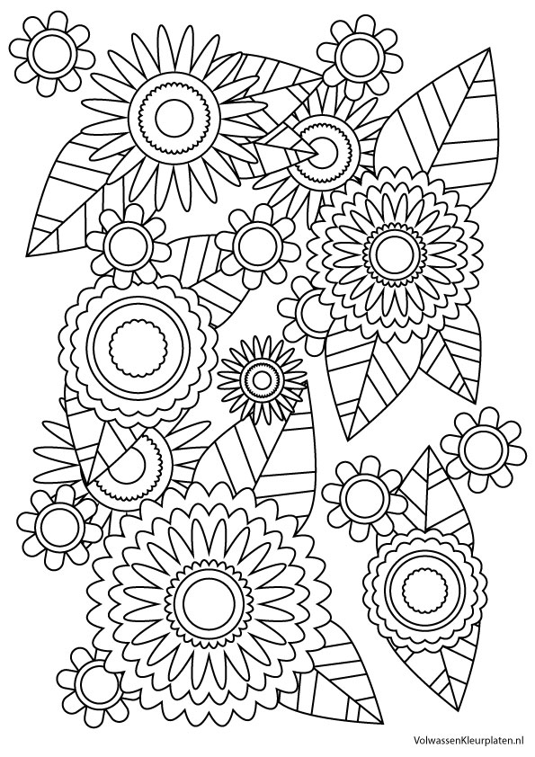 volwassen kleurplaat bloem 2